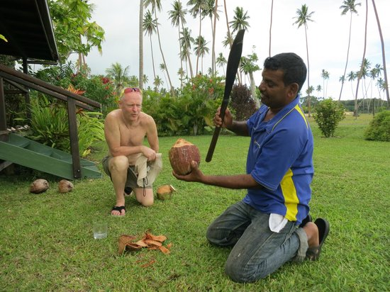 SigaSiga Sands Resort: This was a former coconut plantation - enjoy them fresh!