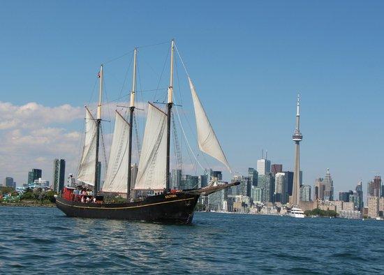 Tallship Cruises : Kajama sailing past the Toronto skyline