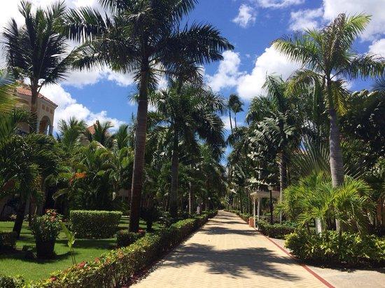 Grand Bahia Principe Punta Cana: Территория