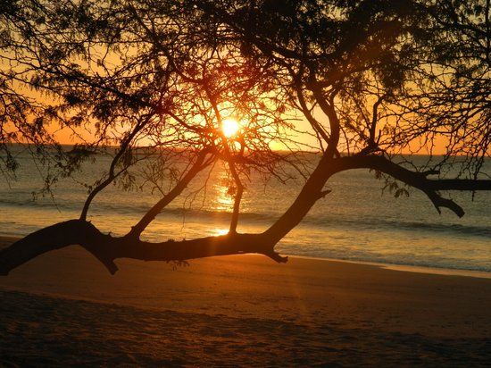 Ecoplaya Beach Resort: Atardecer en Ecoplaya