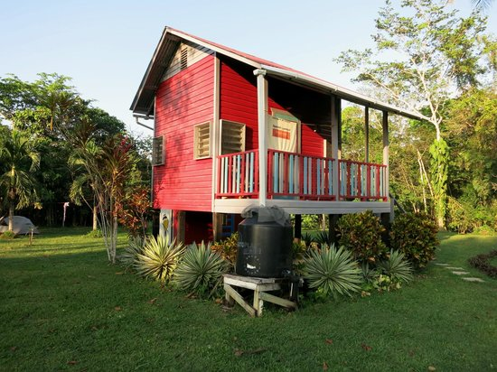 Lower Dover Field Station & Jungle Lodge: Red Cabana