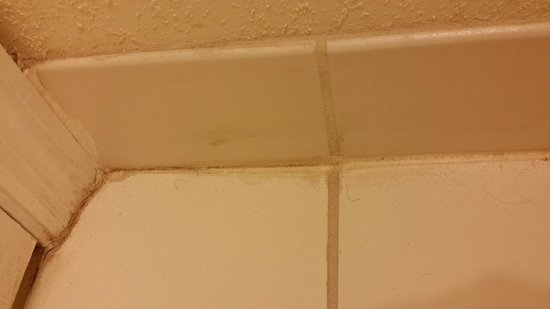 Chase Suite Hotel- Tampa: Nasty bathroom floor with pubic hair of previous tenants