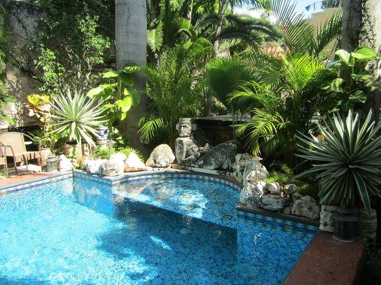 Los Arcos Bed & Breakfast: Pool and garden