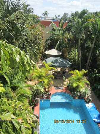 Los Arcos Bed & Breakfast: View from suite balcony into back garden