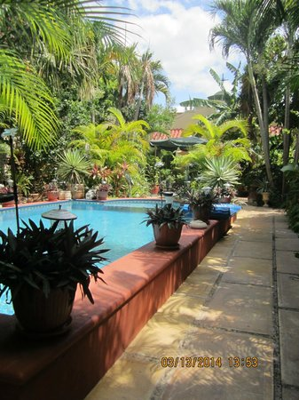 Los Arcos Bed & Breakfast: View of the pool and garden area