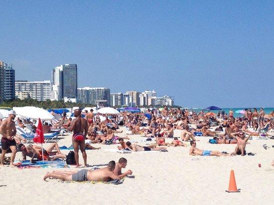 Lummus Park Beach : Busy beach.