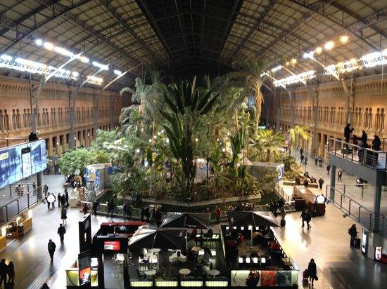 Estación de Atocha: Inside