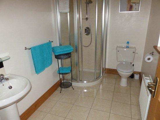 Carnately Lodge : spotless bathroom