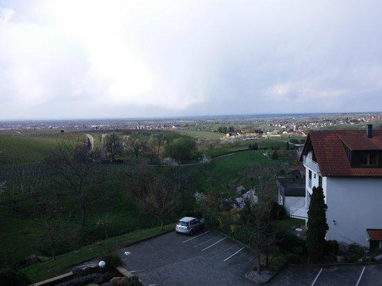 Hotel Rebenhof: panorama