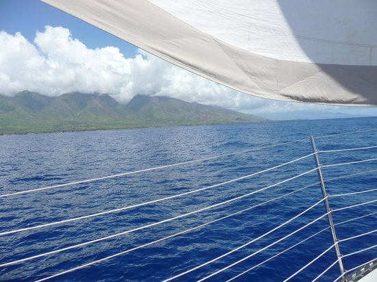 Scotch Mist Sailing Charters : gliding with the Hawaiian breeze