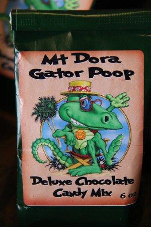 Taste of Our Town Mount Dora: Aligator Poop