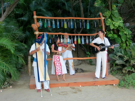 Rhythms of the Night by Vallarta Adventures: Local musicians played as we arrived
