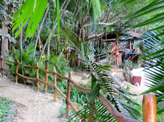"""Rhythms of the Night by Vallarta Adventures: Like something our of """"Survivor"""" show"""
