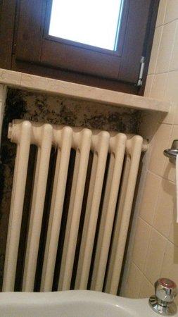Muffa dietro il termosifone del bagno - Picture of Hotel Saint ...