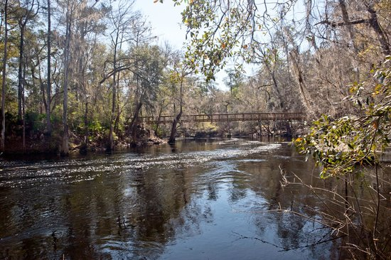 O'Leno State Park: River Trail