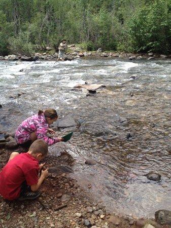 San Juan National Forest: Fantastic fly fishing while kids enjoyed panning for gold.