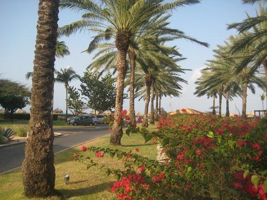 Divi Village Golf and Beach Resort: Entry Way