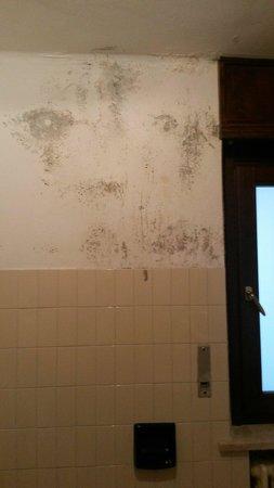 Hotel Saint Nicolas: Muffa sulle pareti del bagno...mah!