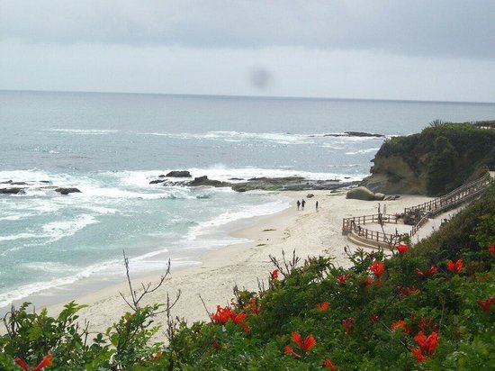 Laguna Beach: Best beach ever.