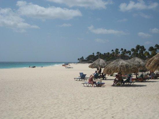Divi Village Golf and Beach Resort: da Beach - very nice