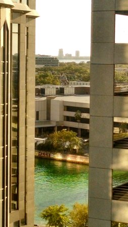 Hilton Tampa Downtown: Room 1139