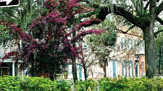Savannah Historic District: Downtown