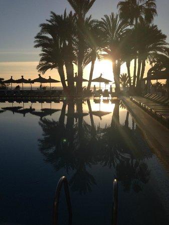 Beach Albatros Agadir : poolside