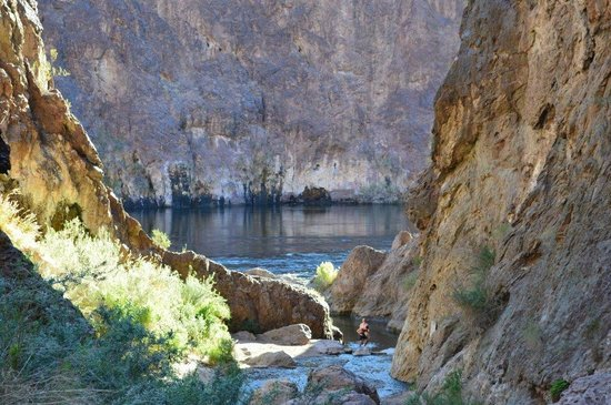 Evolution Expeditions: Kayak Hoover Dam Tour - Gold Strike Hot Springs looking at the Colorado River