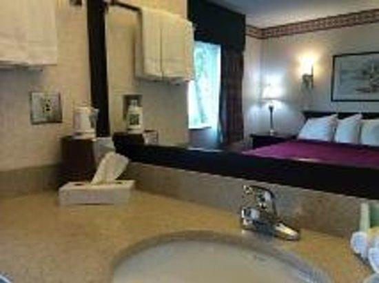 Abbotsford Hotel: Bathroom Vanity