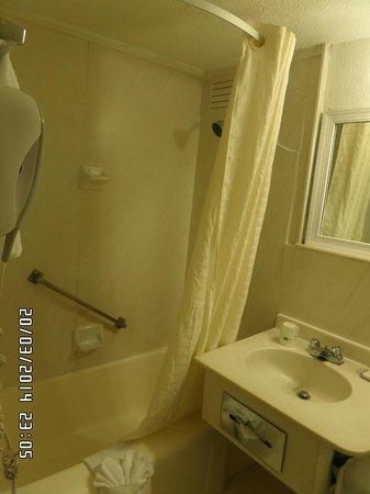 Miami Beach North Plaza Hotel : baño