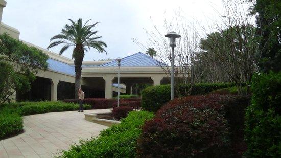 Renaissance Orlando at SeaWorld: Area externa (Piscina)