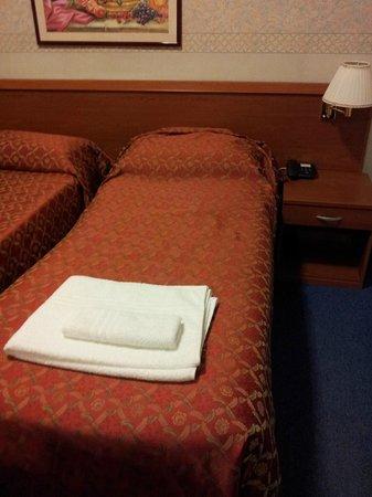 Hotel dei Fiori: camera