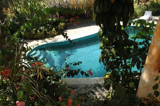 Secret Garden: Pool
