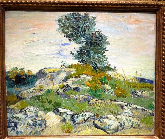 Museum of Fine Arts, Houston : Van Gogh