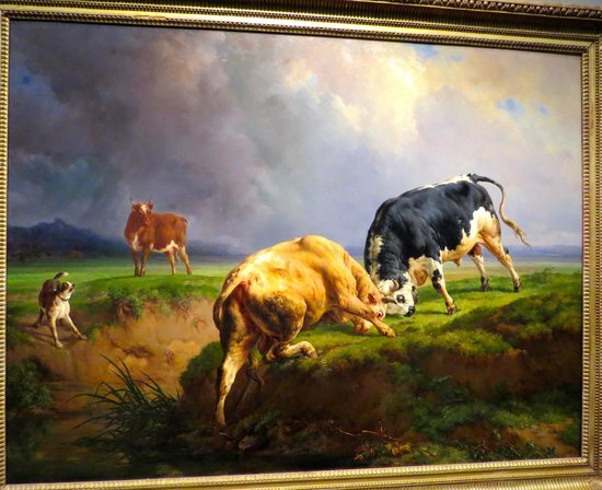 Museum of Fine Arts, Houston : Bull Fight