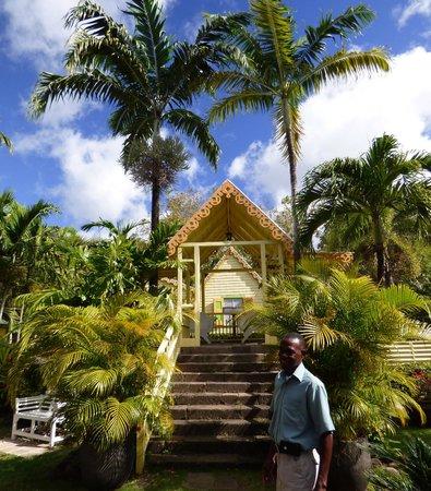 Island Paradise Tours : Romney Manor
