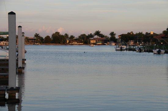 Port of the Islands Everglades - Adventure Resort: Port of the Islands Everglades
