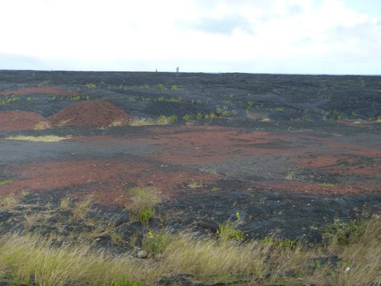 Hawaii Volcano Tours: Remains of Lava Fields