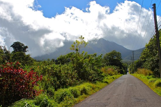 Reyno Day Tours: Road to the mountains