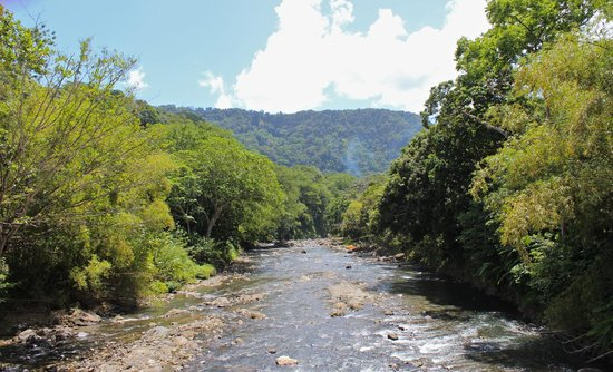 Reyno Day Tours: A river in the mountain region of Dominica