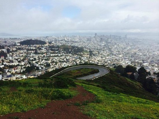 The Great Pacific Tour Co.: Twin Peaks