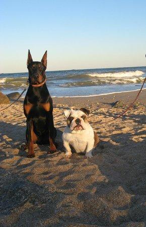 Vilano Beach照片