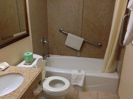 Buena Vista Motor Inn: バスルーム