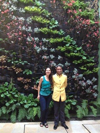 Santa Lucia Hotel Boutique Spa: jardín vertical