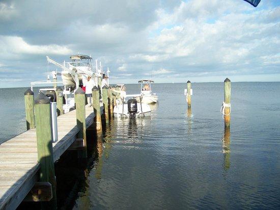 Island Bay Resort : The Dock