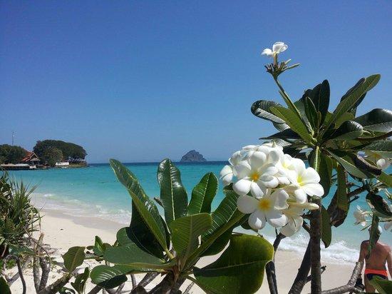 Phi Phi Natural Resort : meraviglia !!!! Febbraio 2014   Bruna
