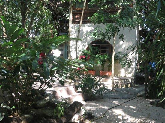 Ecolodge Shalala : Charming garden