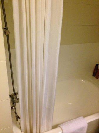 Evergreen Hotel : Short bath