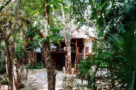 Ecolodge Shalala: The cabana