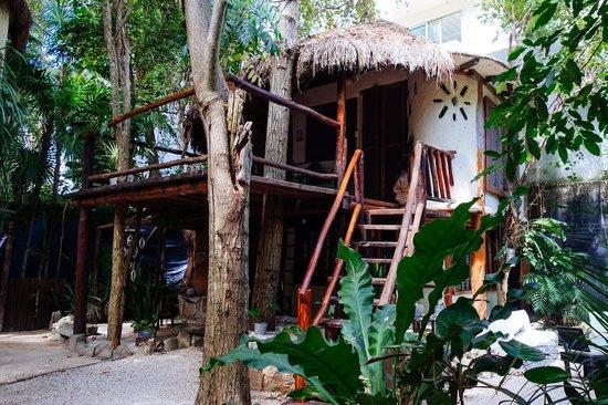 Ecolodge Shalala: the cabana!